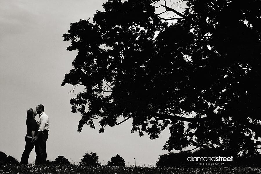 Engagement photos at Fairmont park