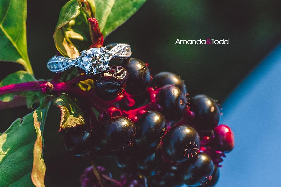 amandatoddint